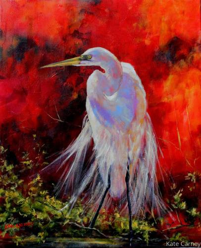 Snowy Egret on Red