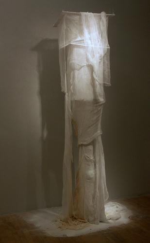Absence Presence MFA Exhibition Sieve 2010