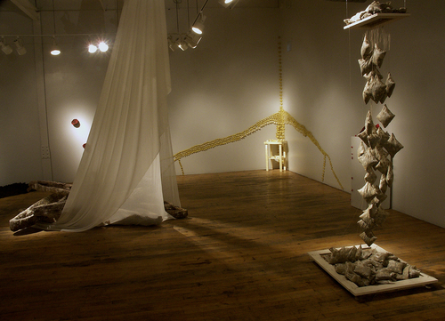 Absence Presence MFA Exhibition 2010