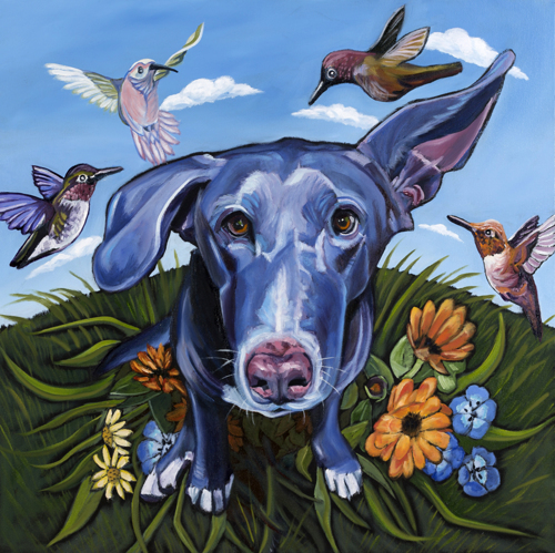 Hummingbirds and Dog