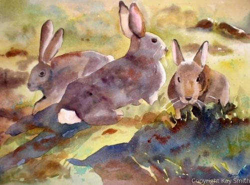 Hare Raising Tale