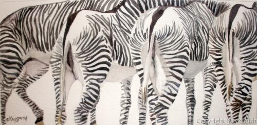 Striped Rears