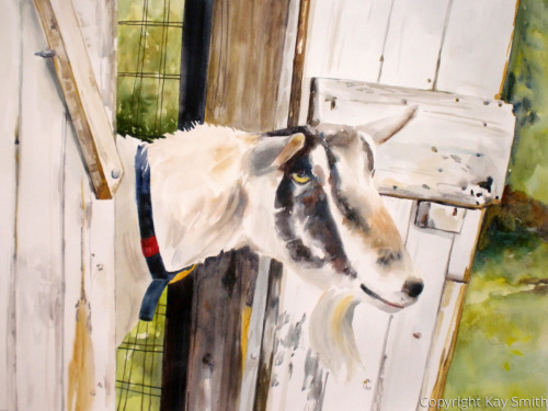 Got My Goat