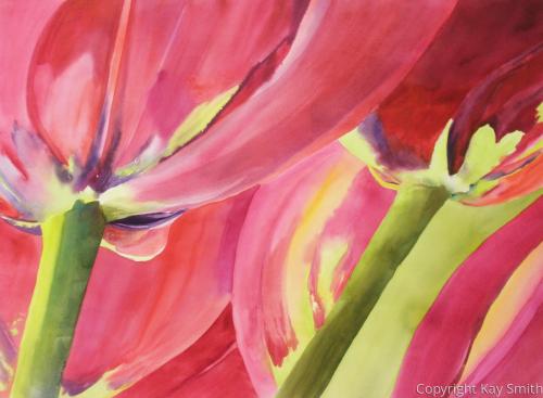 Red Velvet Tulips