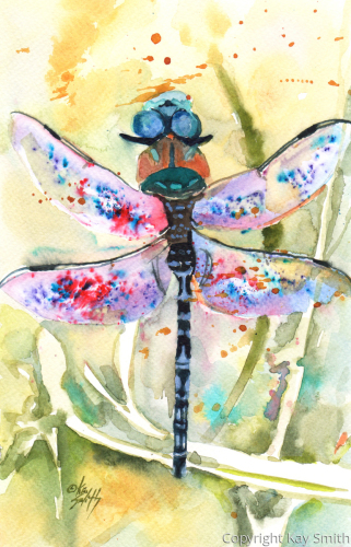 Dragonfly Day