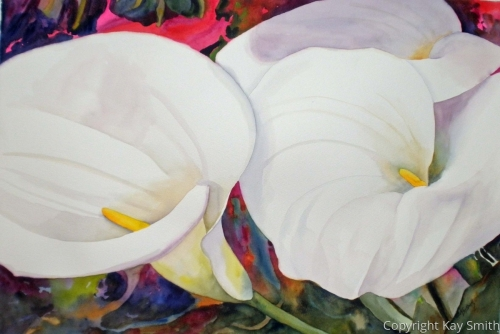 St Ives Calla Lilies by Kay Smith