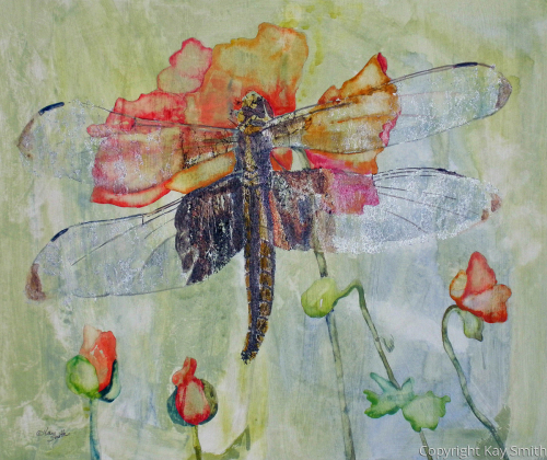 Dragonfly with Poppies