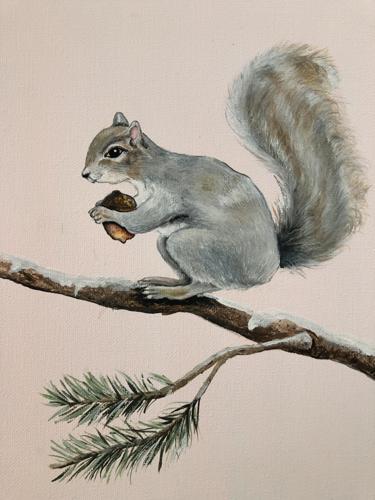 Winter Grey Squirrel