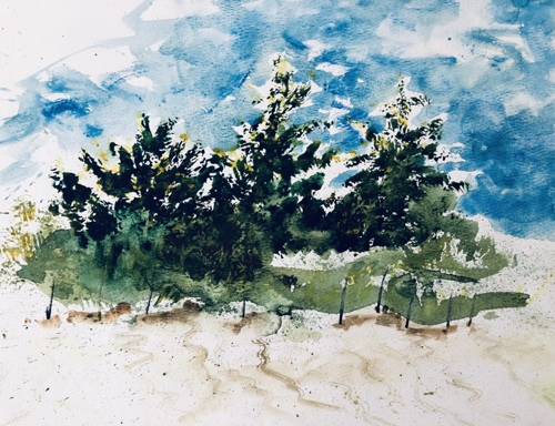 Stormy Beach Pines