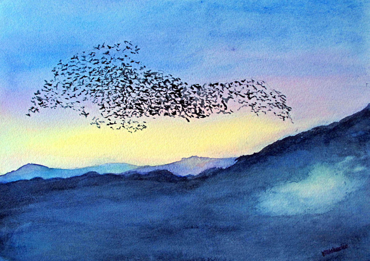 Dance of the Starlings (large view)