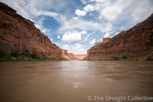 Floating in the Colorado River