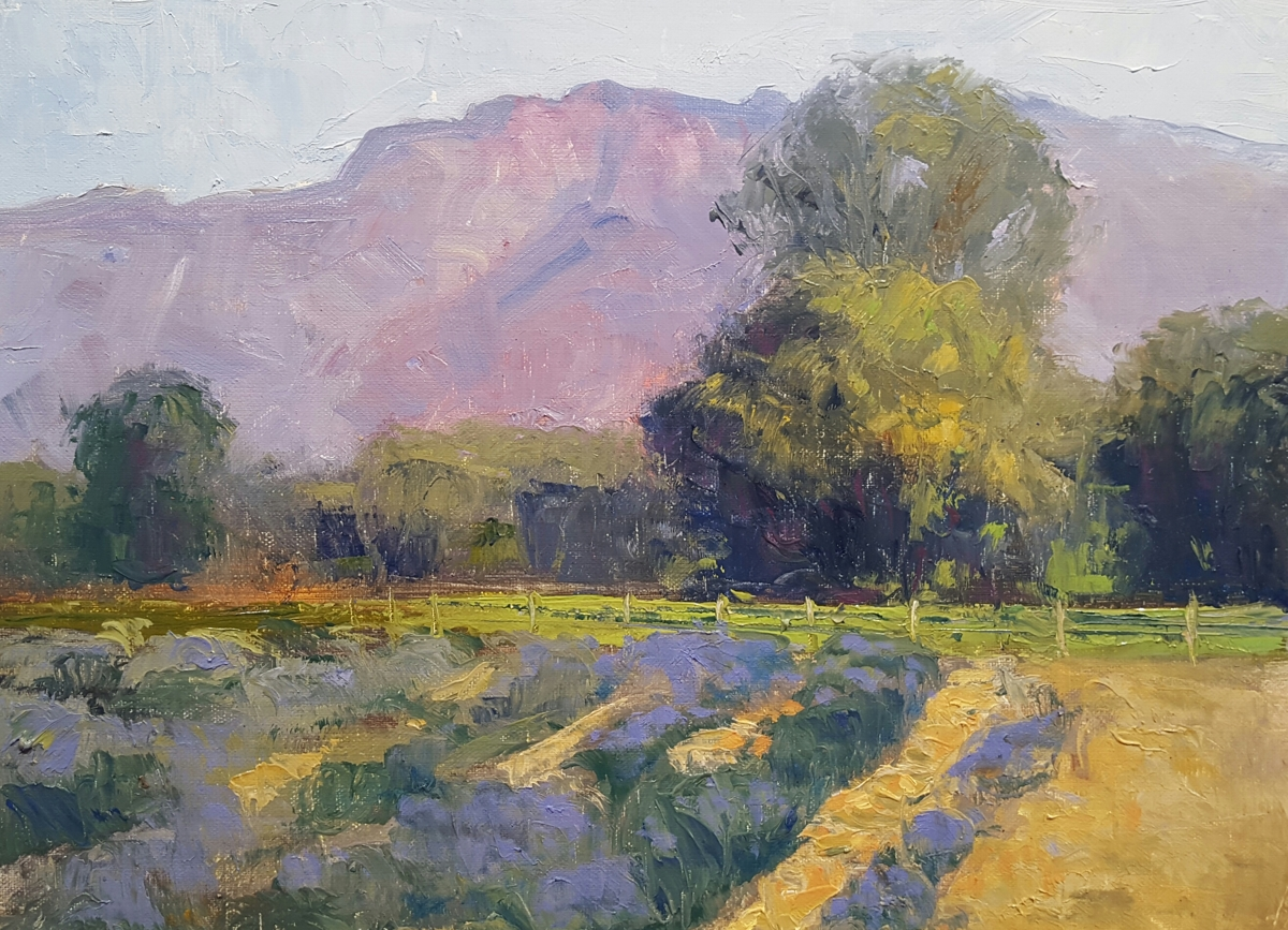 Los Poblanos Lavender Fields  (large view)