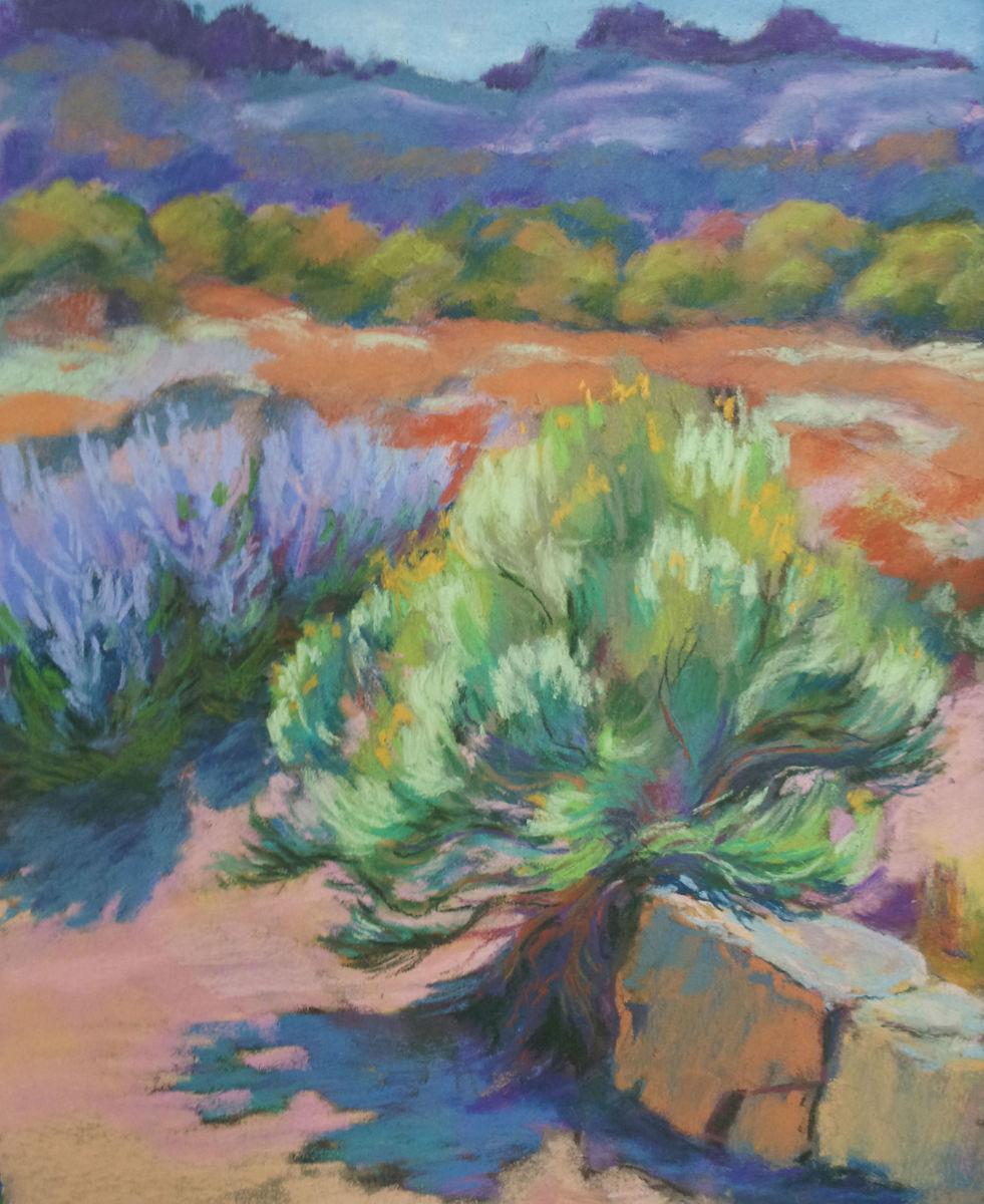 Chamisa & Sage (large view)