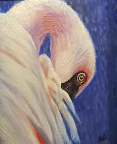Flamingo Looking Back