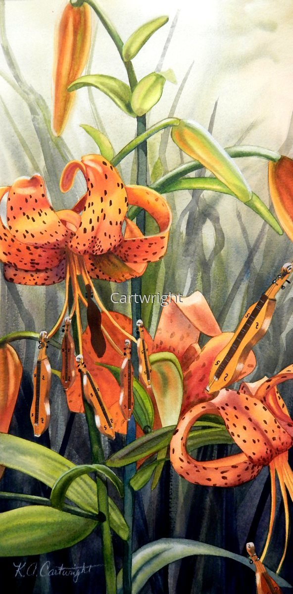 Dulcimer Lily (large view)
