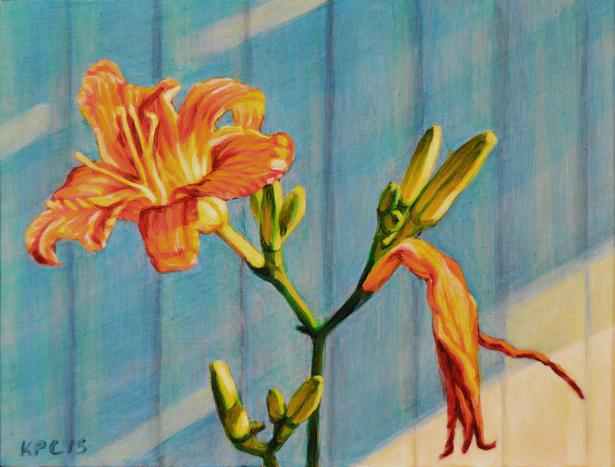 Day lily Cycle (large view)