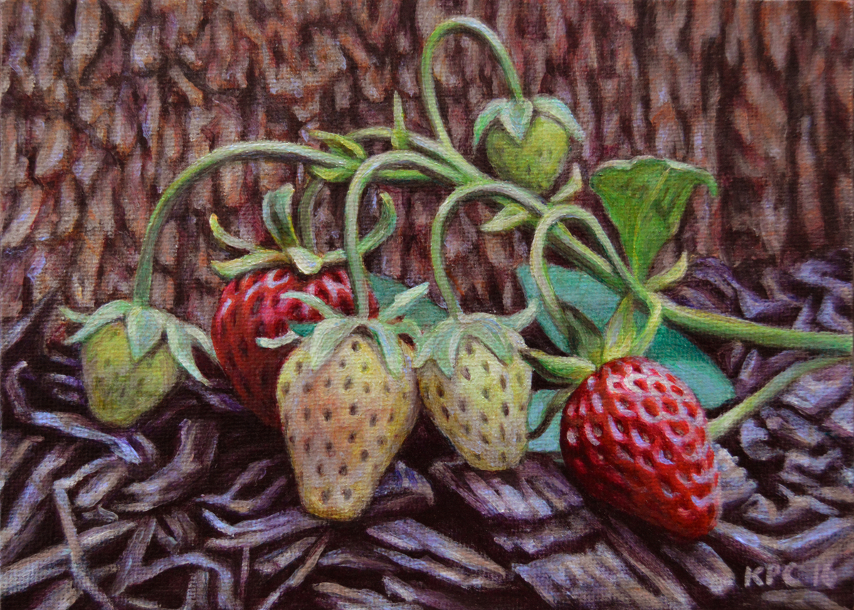 Ripening Strawberries (large view)