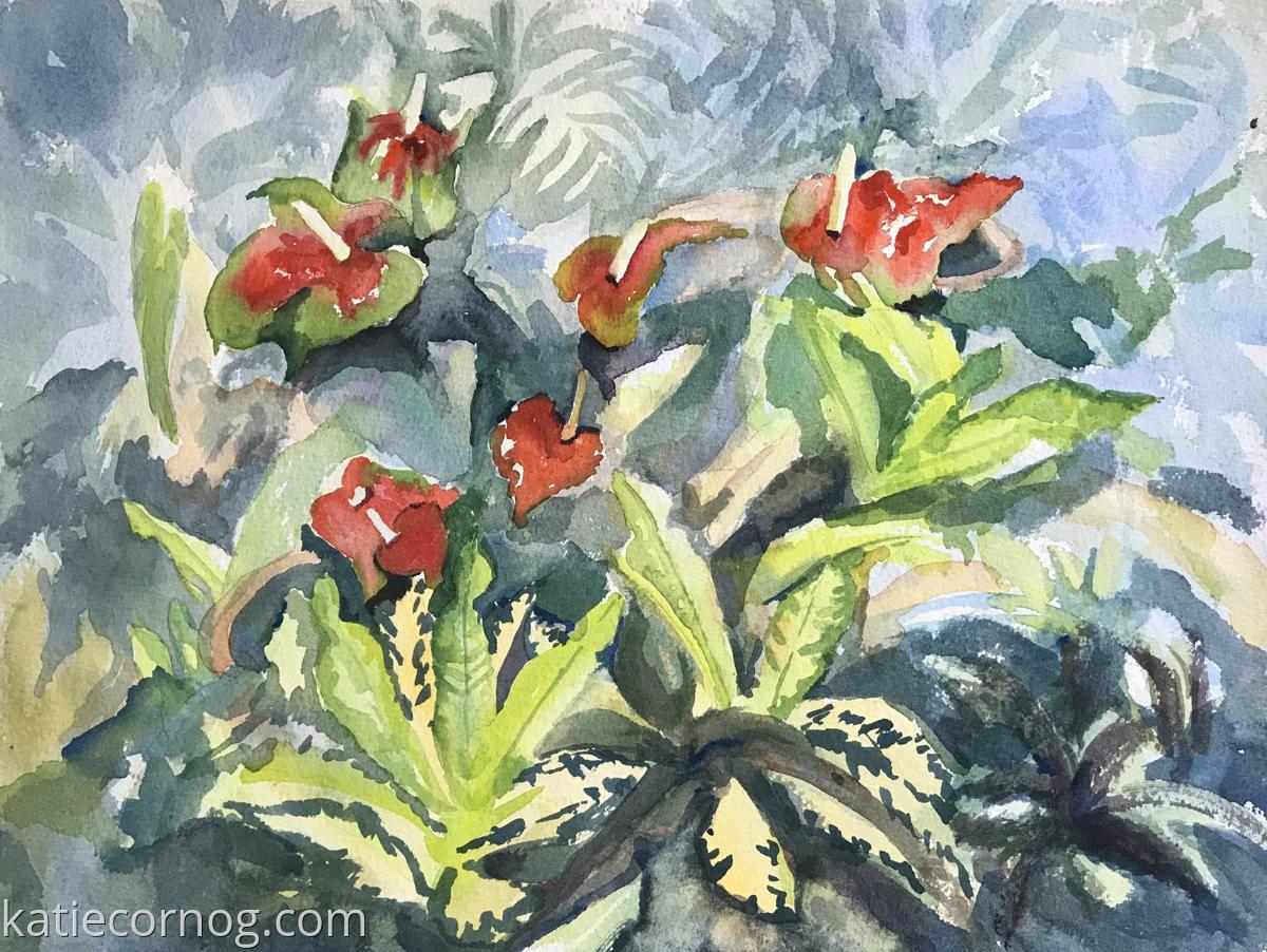 Tropical Anthurium (large view)