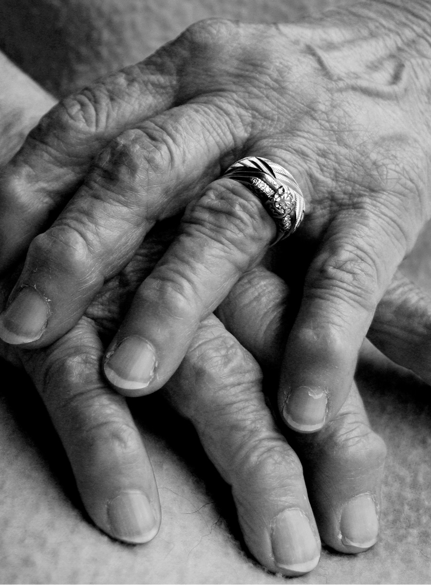 MY MOTHERS HANDS (large view)