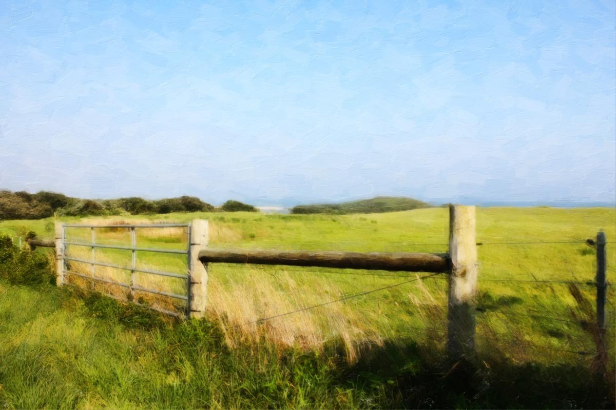 PASTURE LAND (large view)