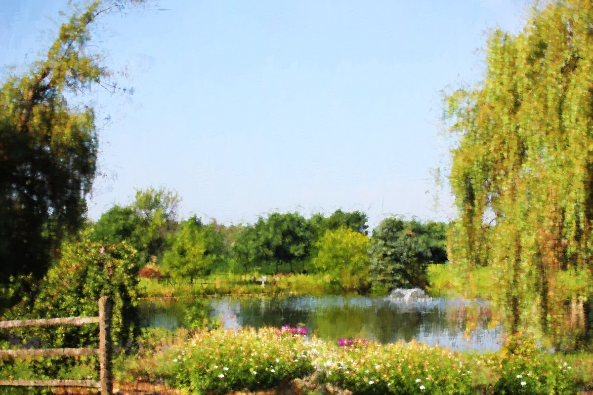 WILLOW POND (large view)