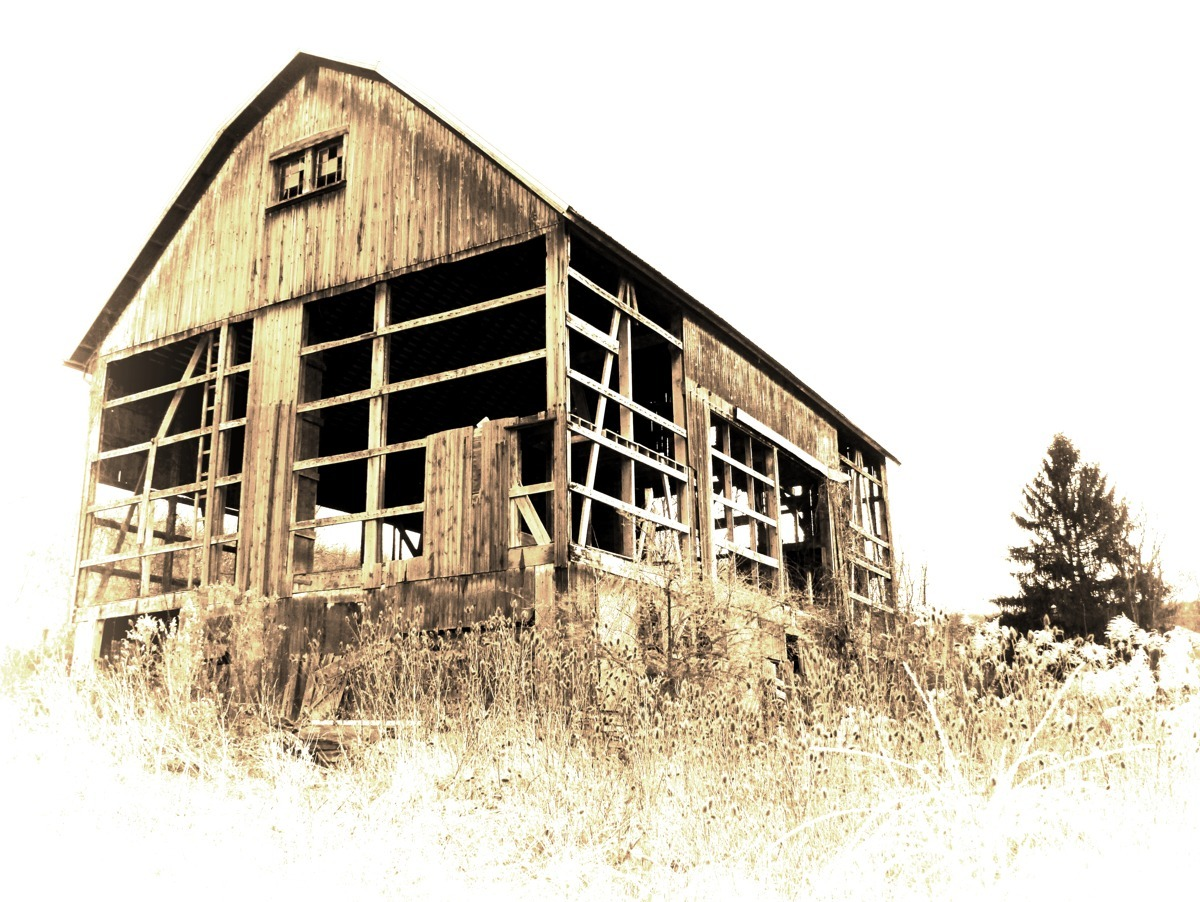 BARN ON THE HILL (large view)