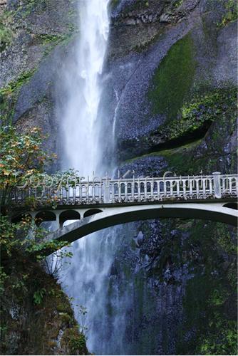 Multnomah Falls (large view)