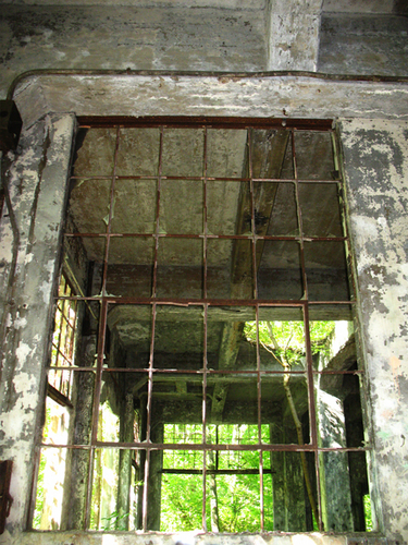 OLD WINDOW (large view)