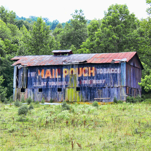 Mail Pouch Barn (large view)