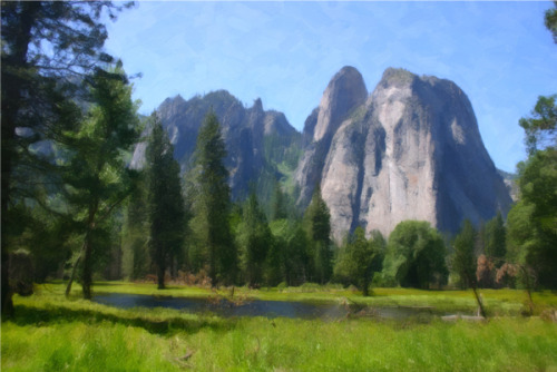 YOSEMITE MEADOW (large view)
