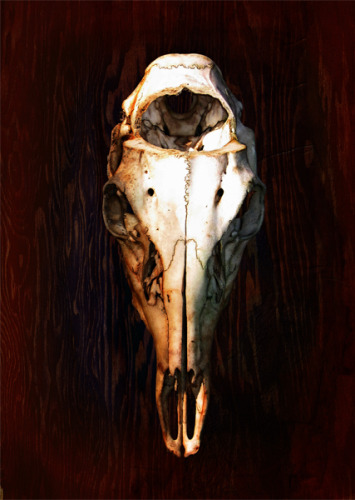SKULL FRONT (large view)