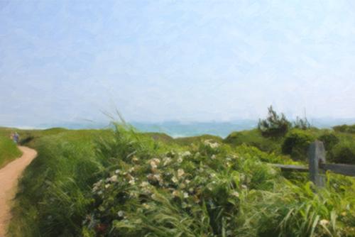 BEACH TRAIL (large view)