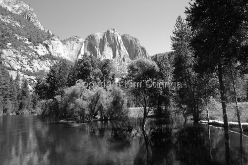 Yosemite #13 (large view)