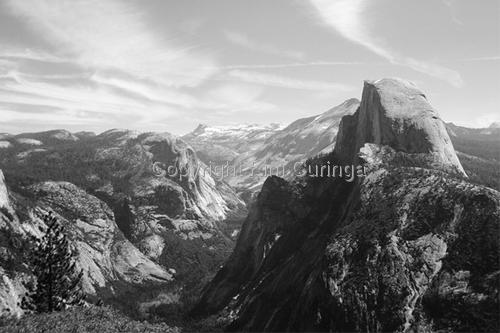 Yosemite #9 (large view)