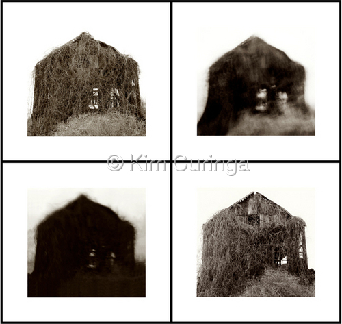 4 Views On A Barn (large view)