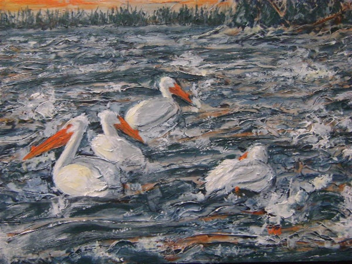 Pelicans - Rapids of the Drowning - Ft Smith, NWT (large view)