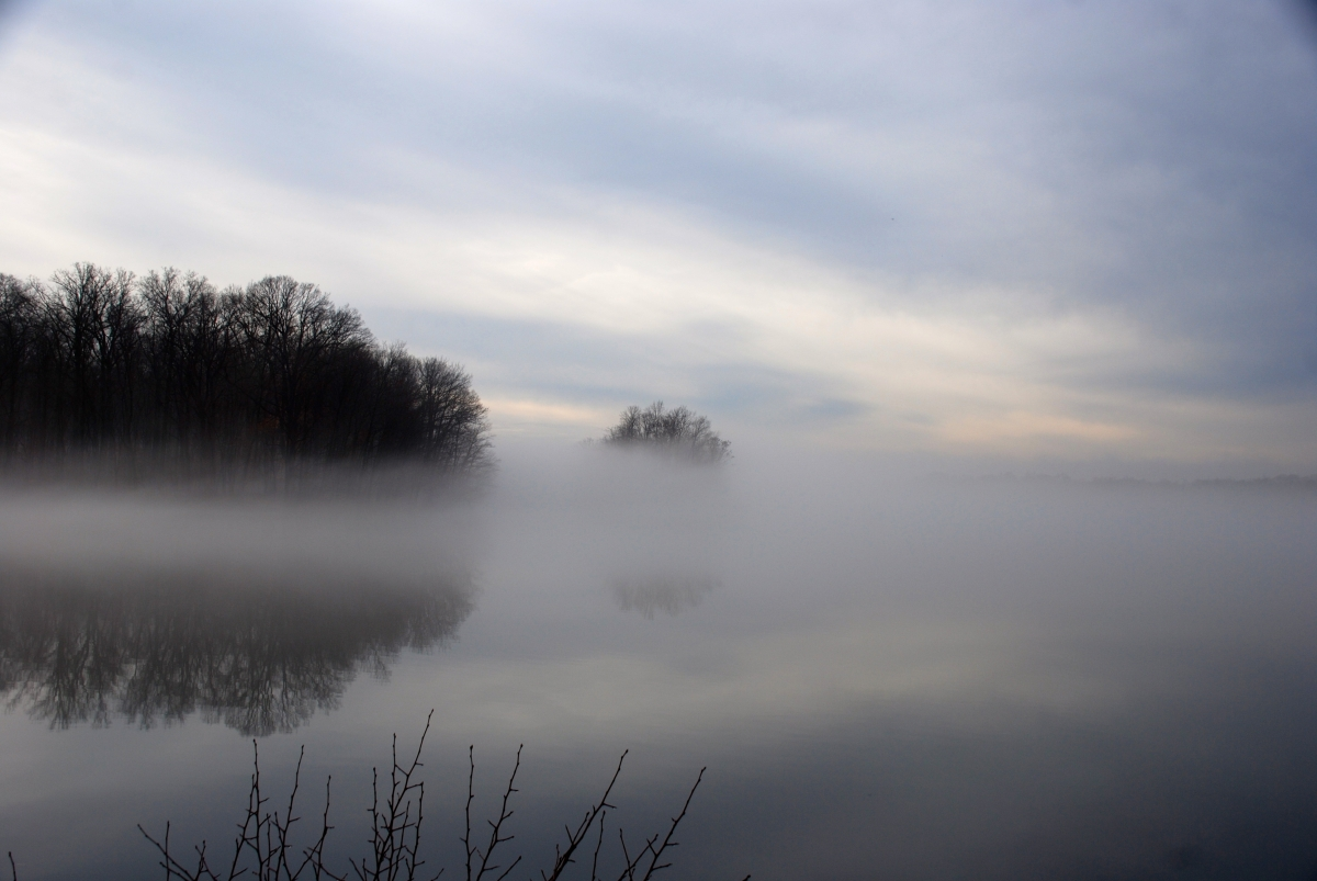 Early fog by kenneth burns (large view)