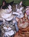 Four Felines