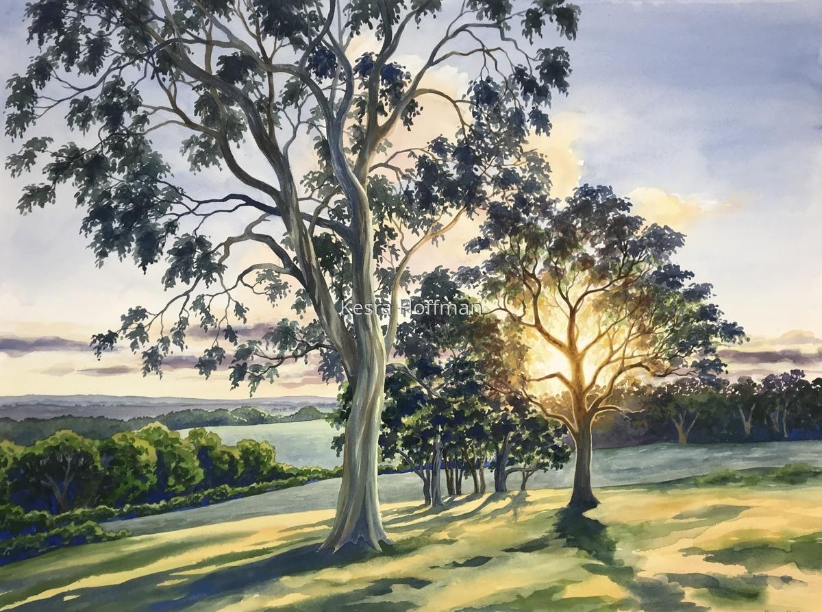 Morning Promise, South Australia, Australia (large view)