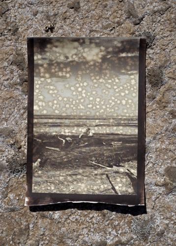 salt print 8