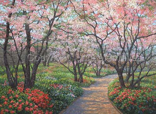 Spring Blossom Path