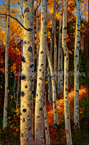 Aspen Abstract (large view)