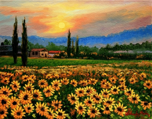 Sunflower Sunset, Provence