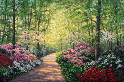 Azalea Path POD
