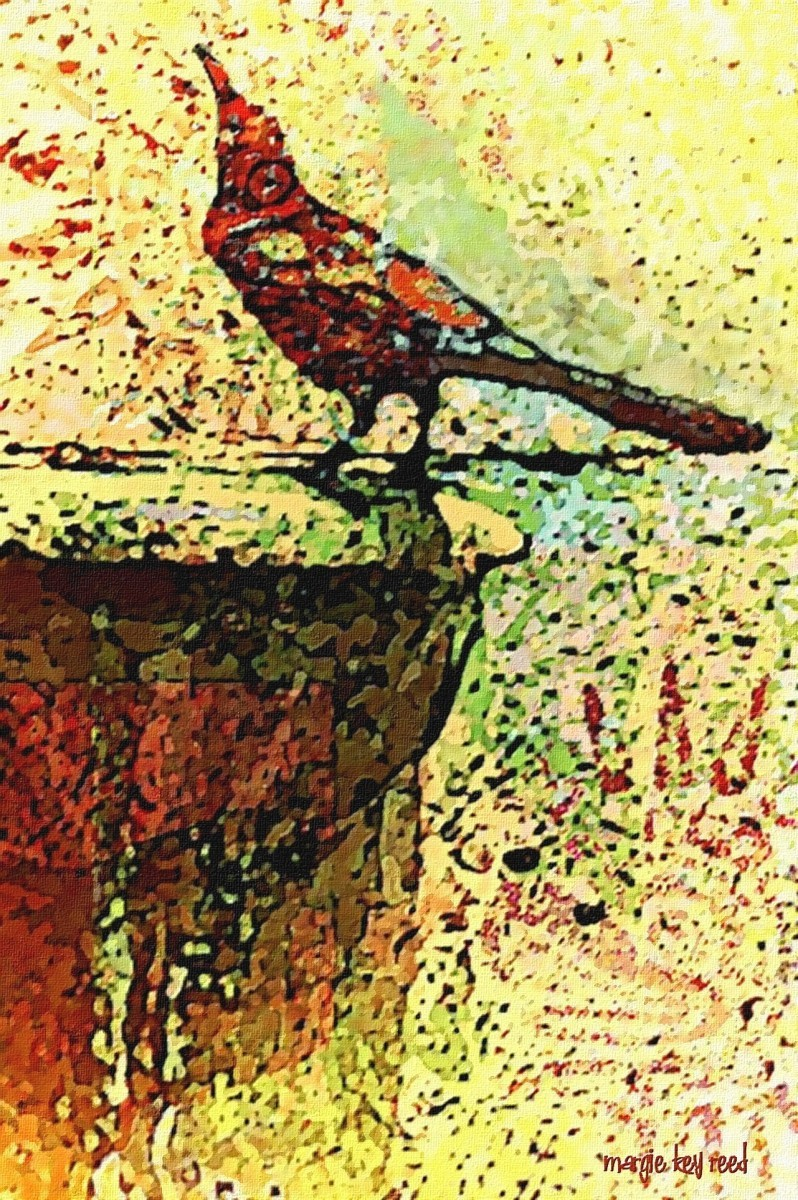 Drinking Crow (large view)