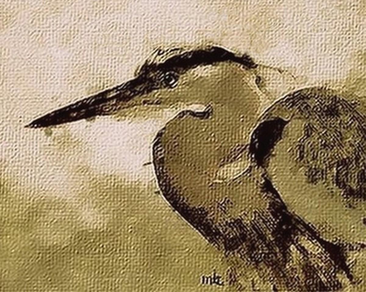 Blue Heron (large view)