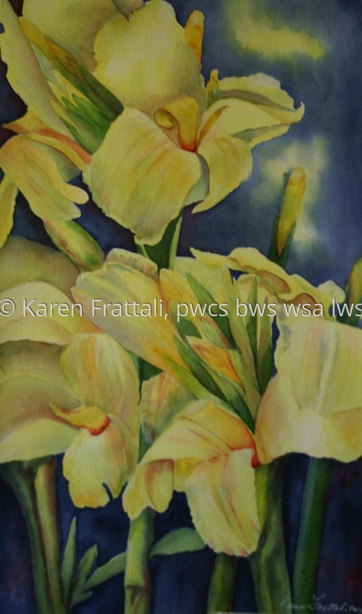 Yellow Cannas,  (large view)
