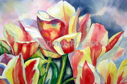 Tulips   (large view)