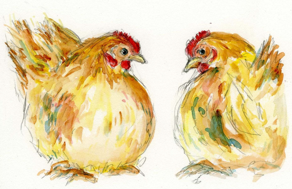 Hen Pair (large view)