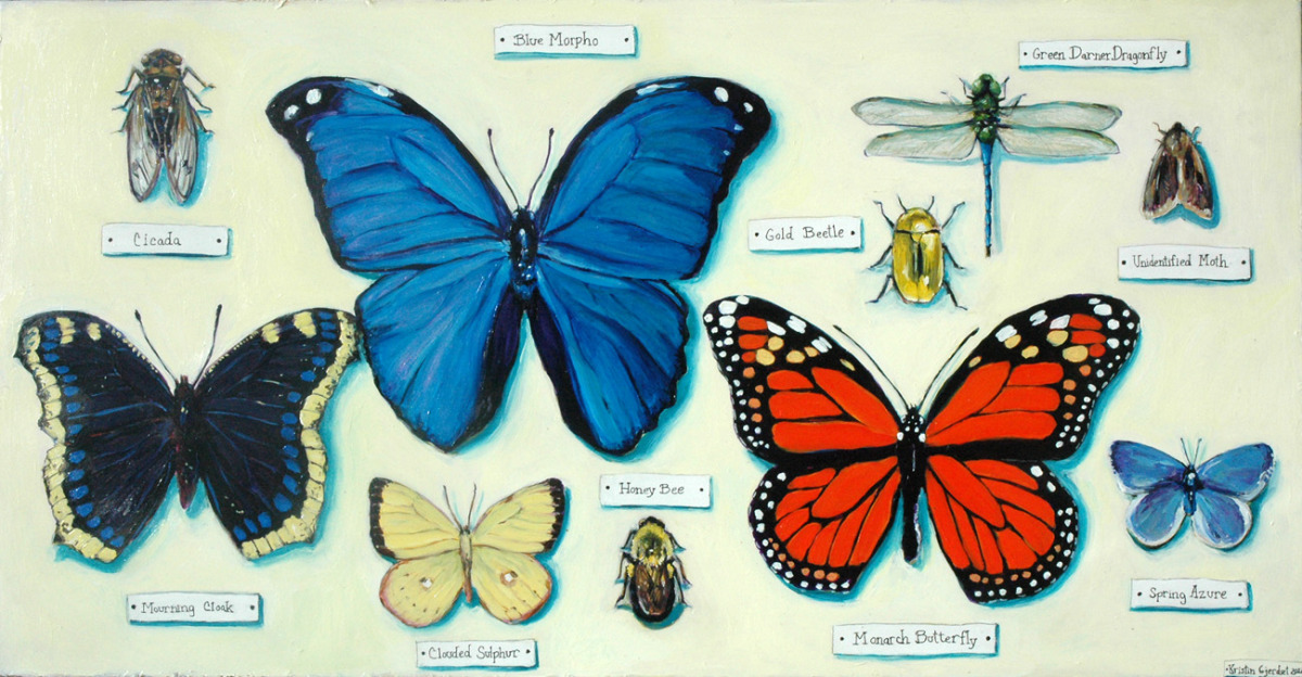 """Racine Public Art Project 2012: Trunks - """"The Naturalist Collection Box,"""" Top (large view)"""